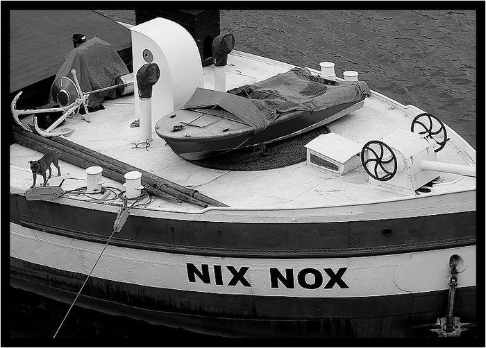 Nixnox