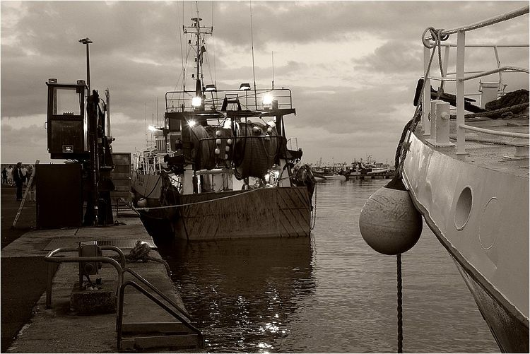 Saint-Quay 1 019