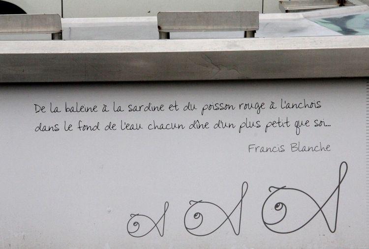 3 Saint-Quay 025