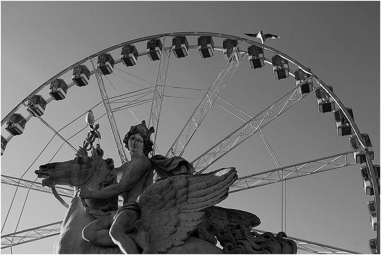 Statuemouette3001.JPG 2