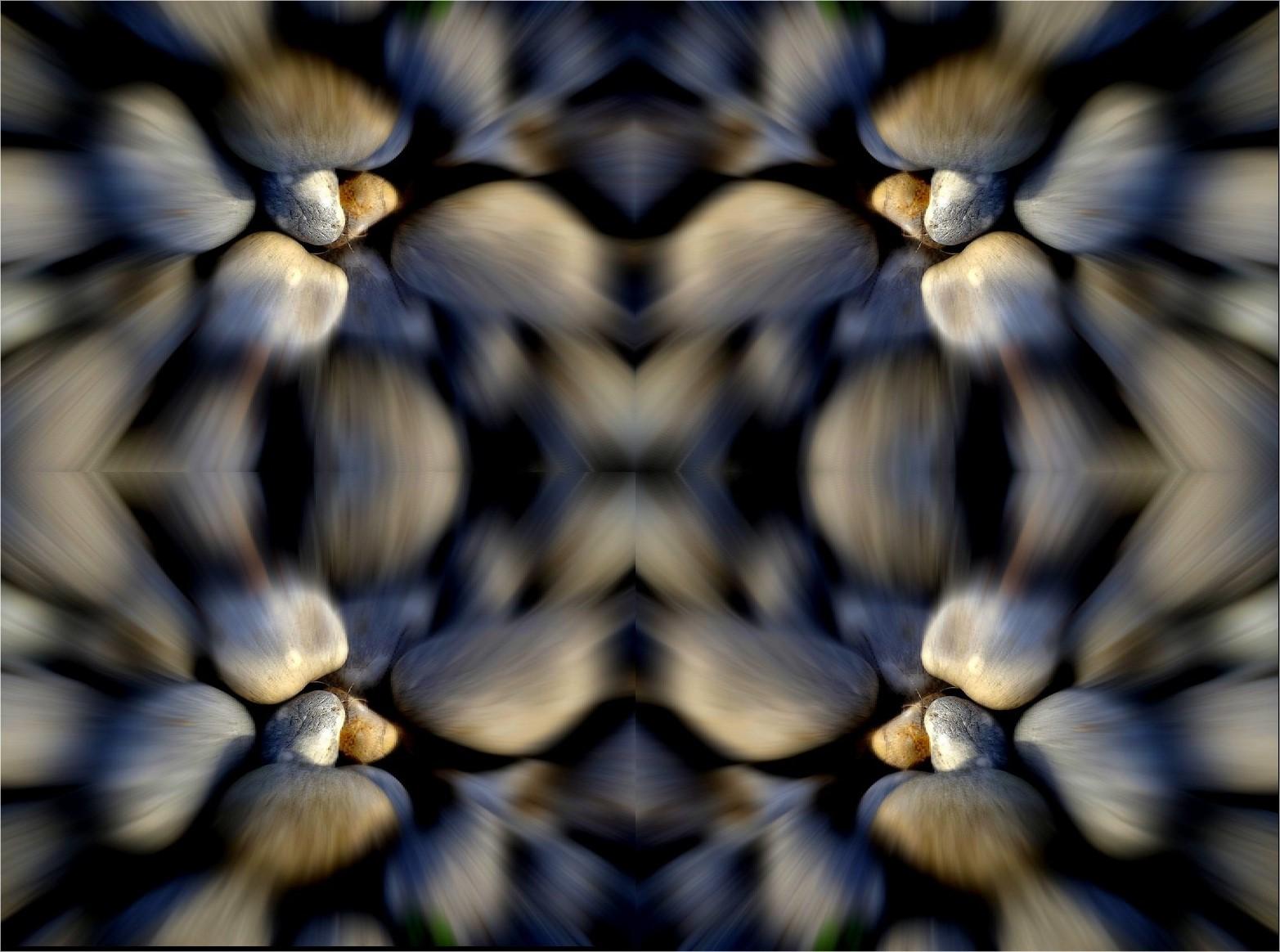 Galeidoscope2 1