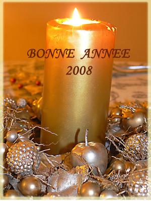 Bonne_anne_2008