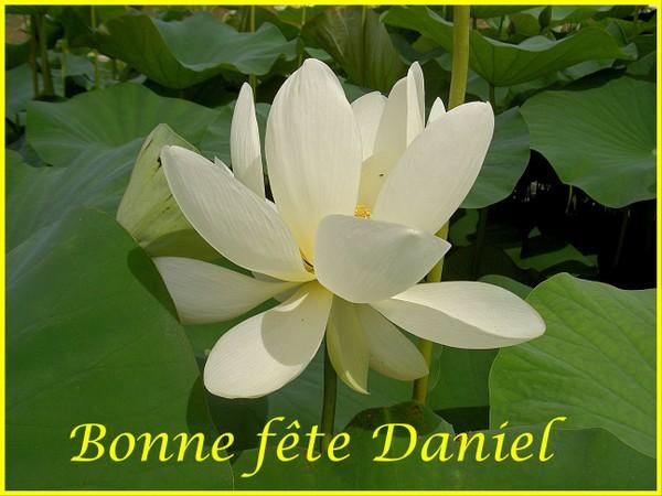 http://moniquetdany.typepad.fr/moniquetdany/images/bonne_fte_daniel.jpg