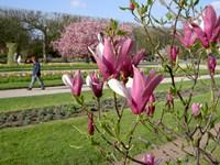 Jardin_des_plantes9_3